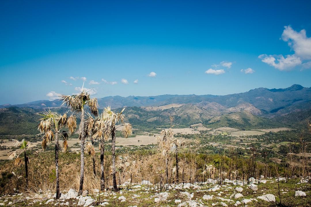 Cuban landscape, cuba, Trinidad, rock and grass, palm tree.