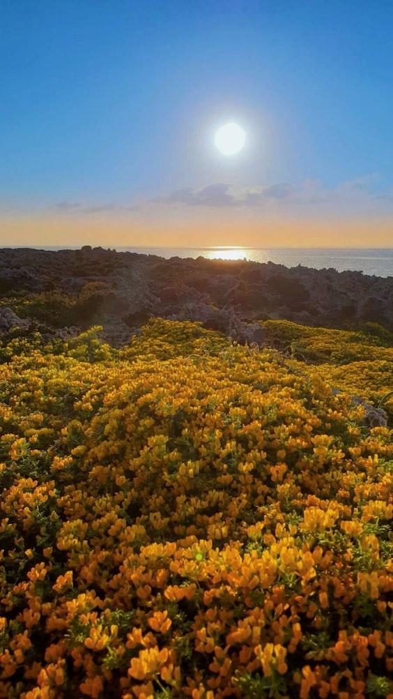 beautiful scenery at Menorca