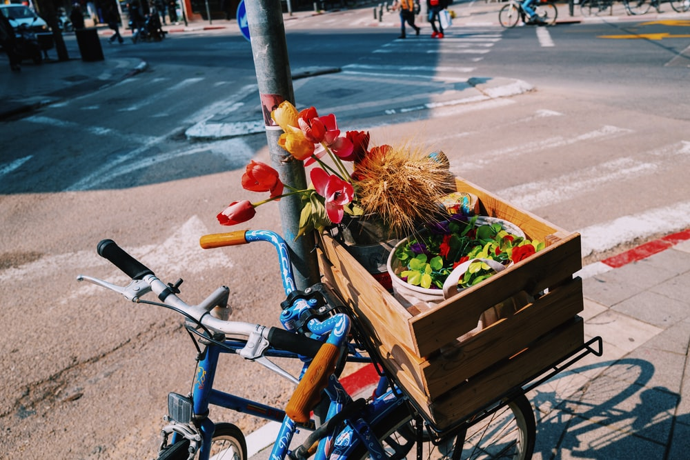 blue bicycle with red and white flowers on top