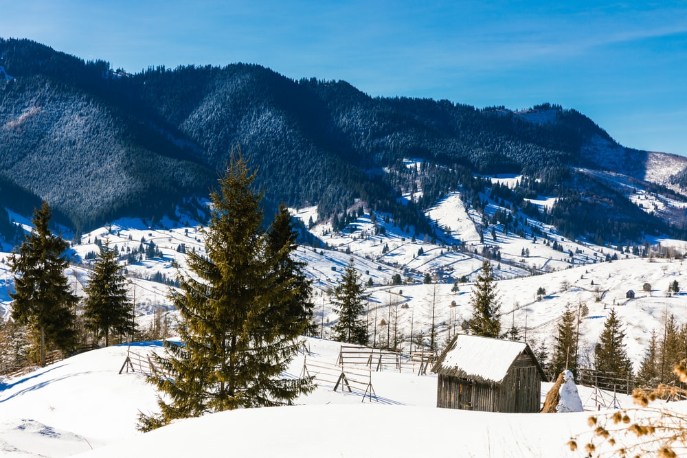brown wooden house on snow covered ground near trees and mountains during daytime
