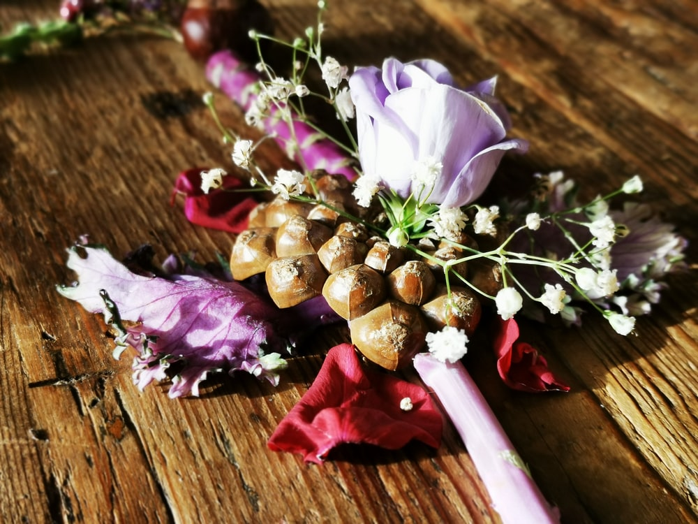 white and purple flower on brown wooden table