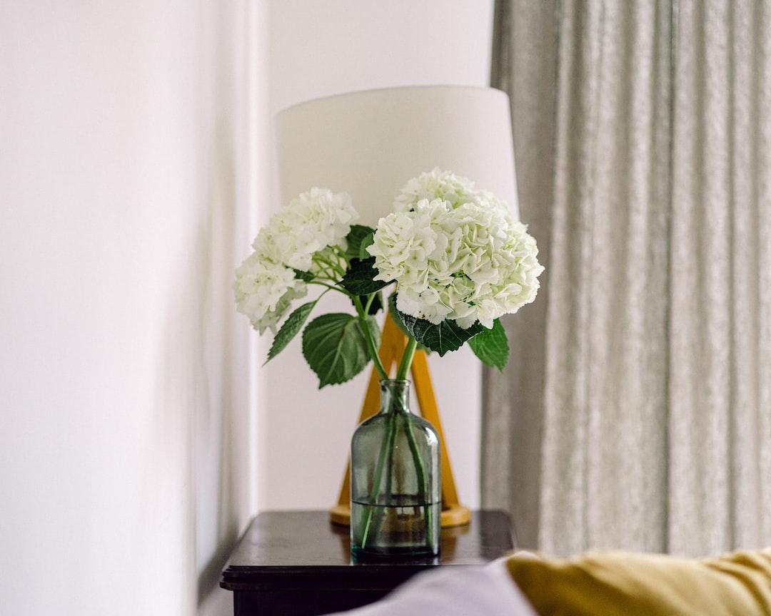 Hydrangeas Flowers In the Living Room - unsplash