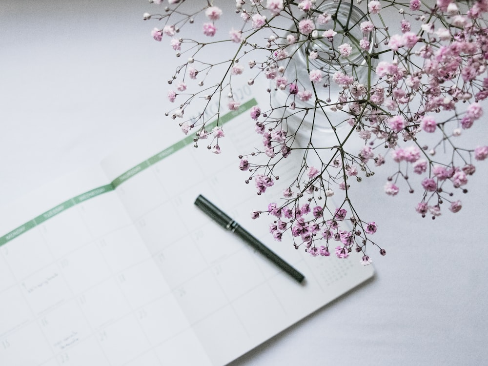 pink flowers on white paper