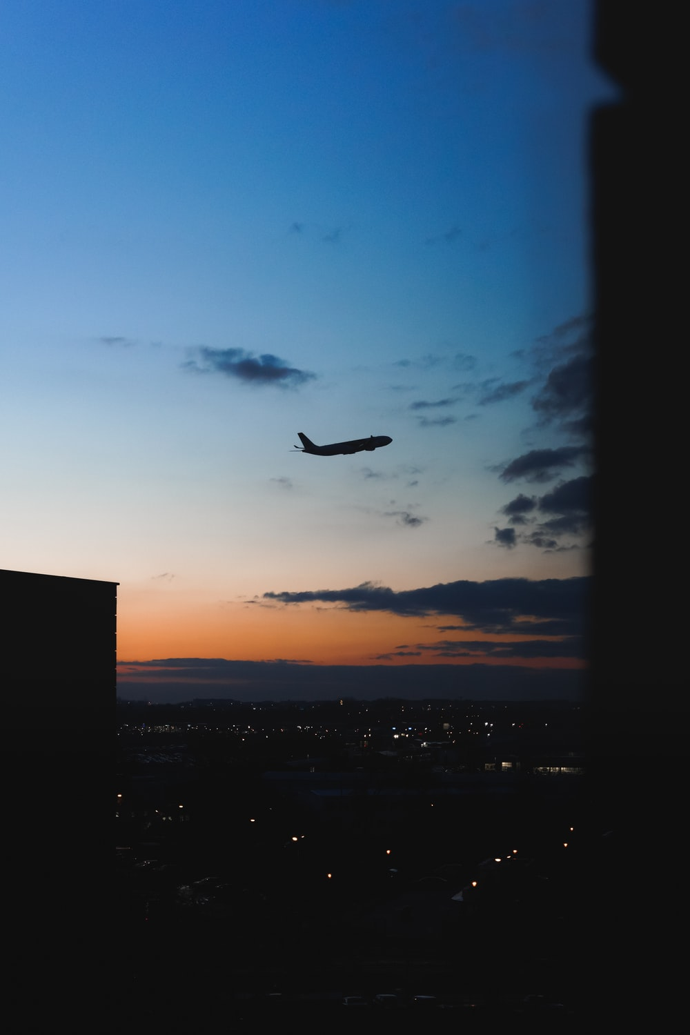 silhouette of bird flying over the city during sunset