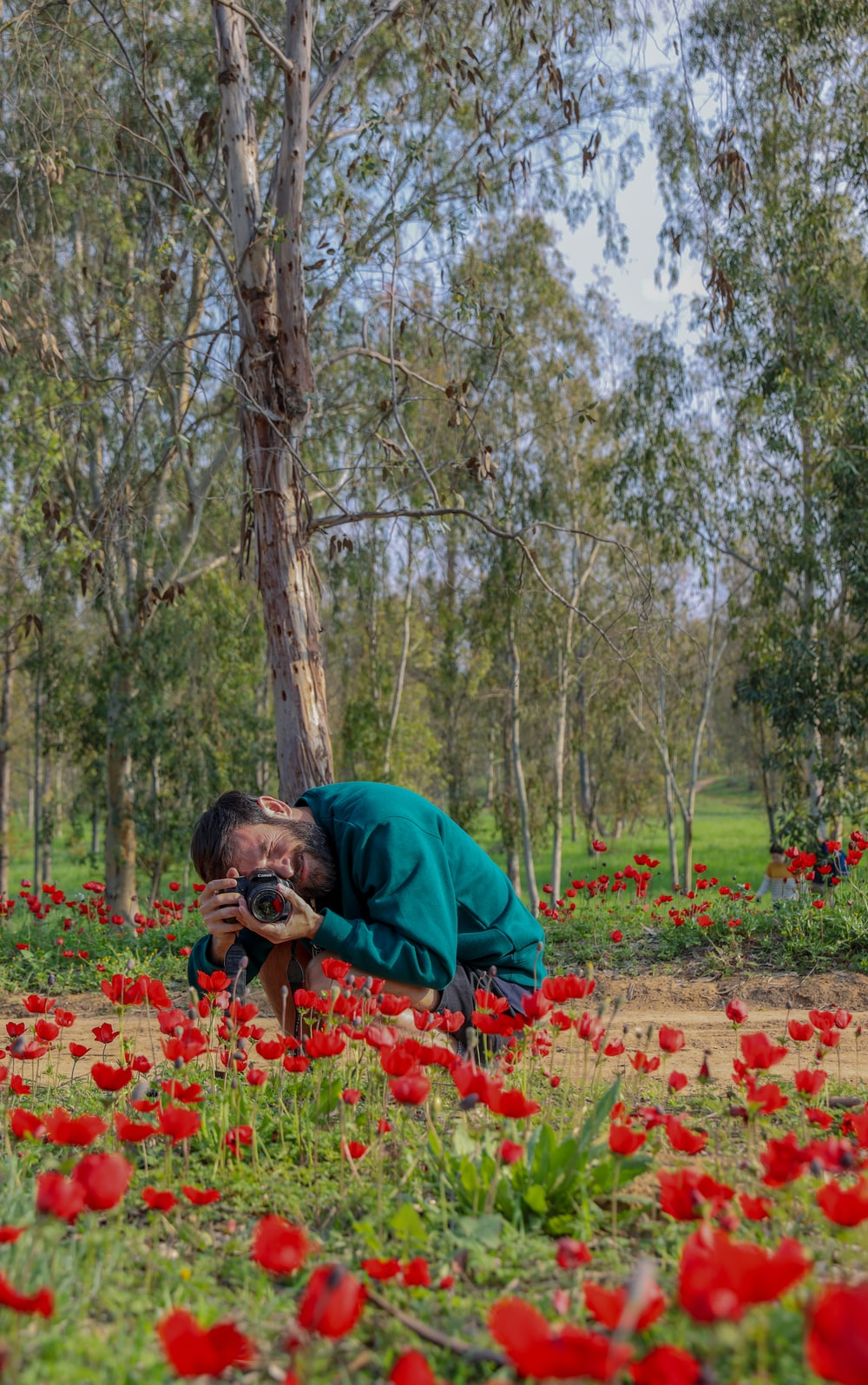man in green hoodie and woman in blue jacket kissing on red flower field during daytime