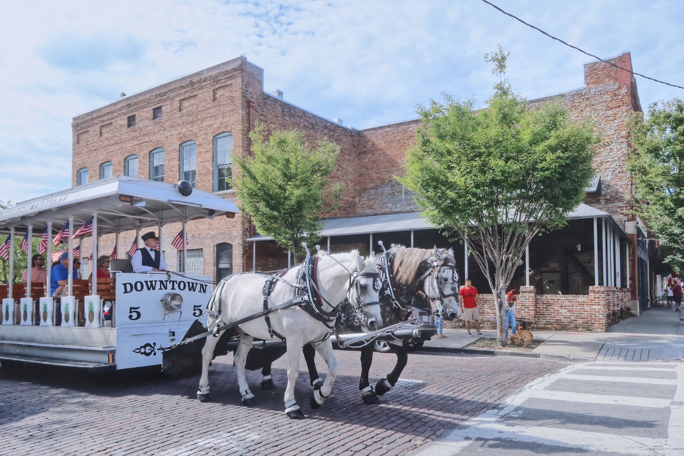 a horse-drawn cart being pulled through Wilmington, NC