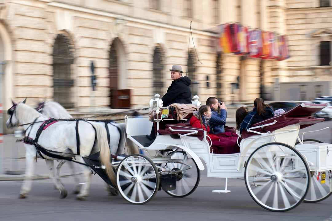 Horse-drawn carriage by a coachman in Vienna streets and tourist takes pictures