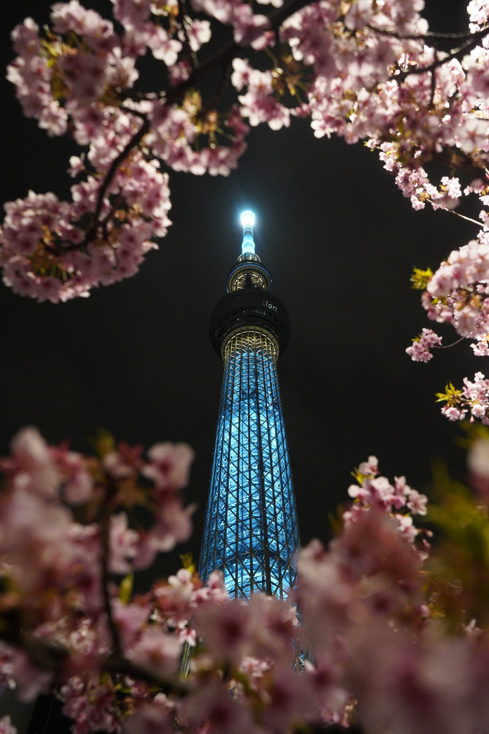 blue and green tower with pink and white flowers