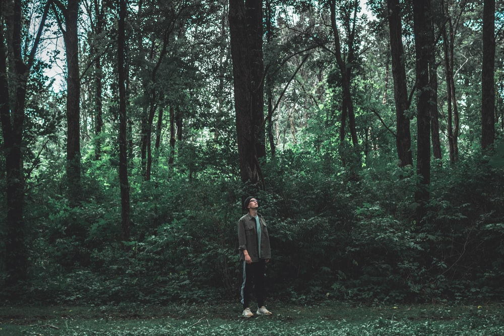 woman in brown jacket standing on forest during daytime