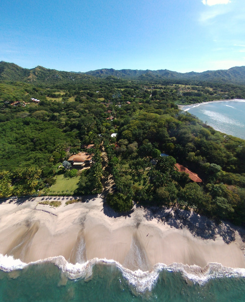 aerial view of green trees and brown sand beach during daytime
