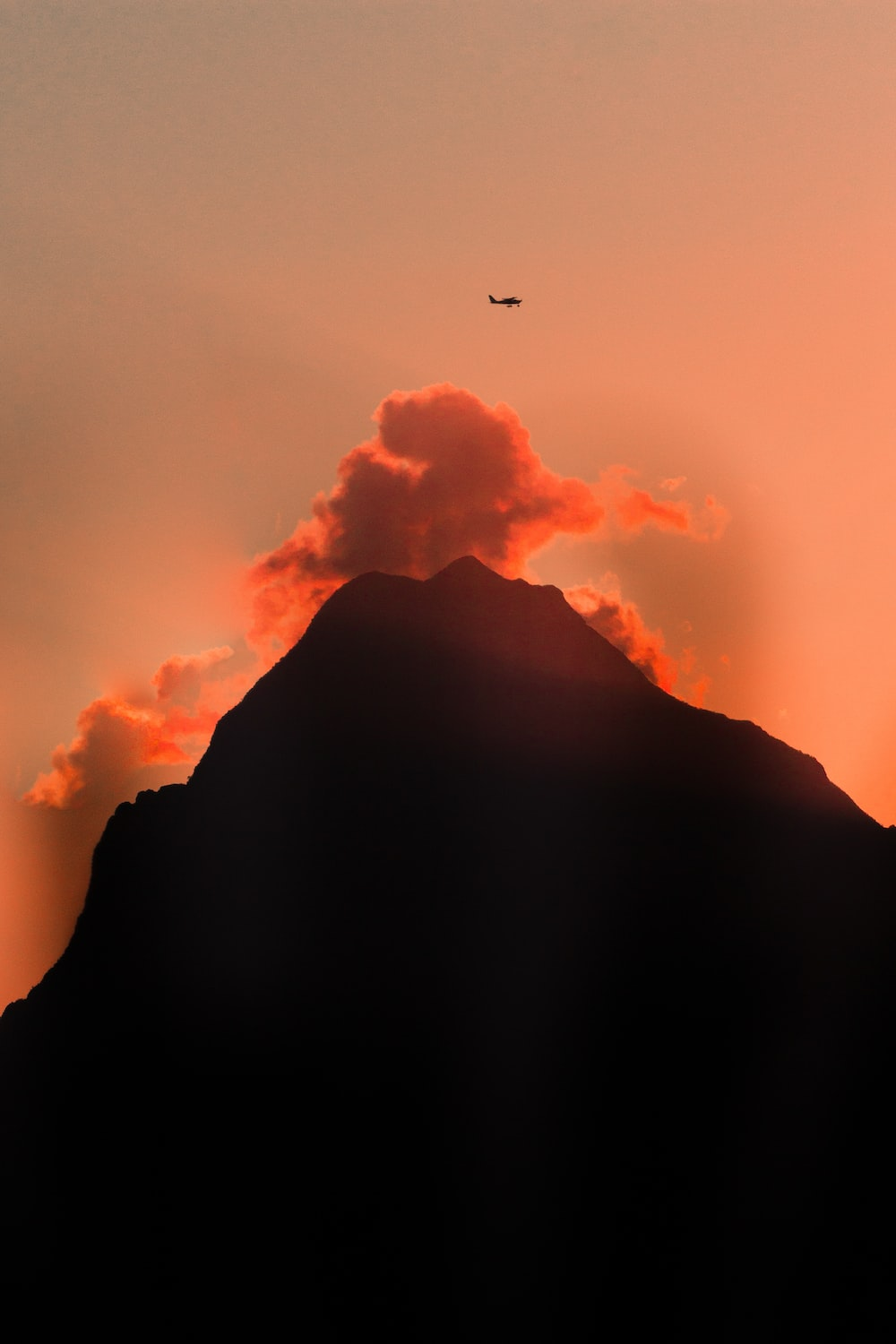silhouette of bird flying over the clouds during daytime
