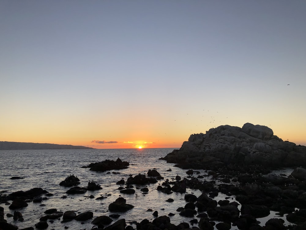 black rocks on sea shore during sunset
