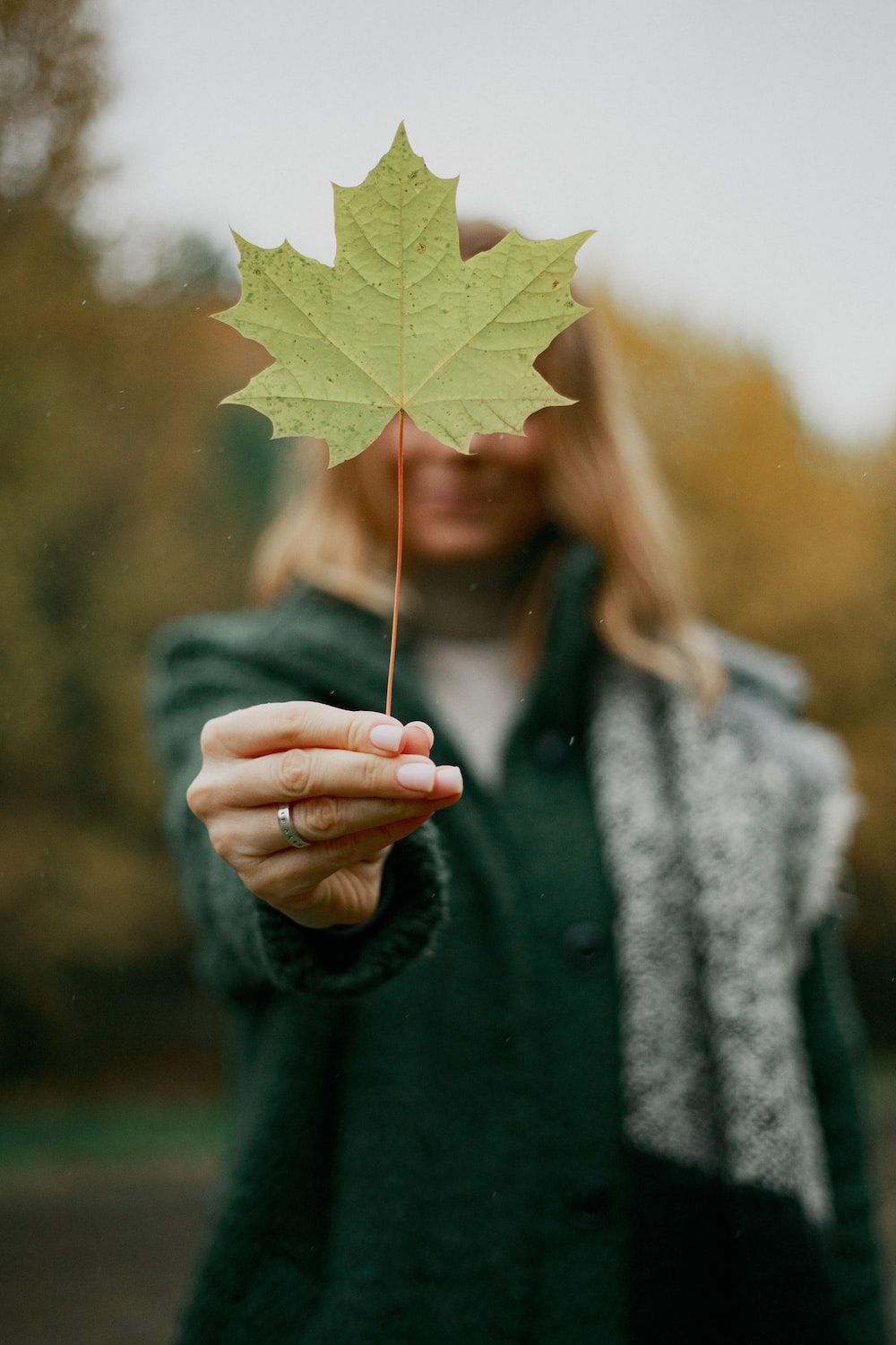 woman holding yellow maple leaf