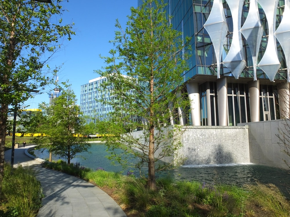 green trees near white building during daytime