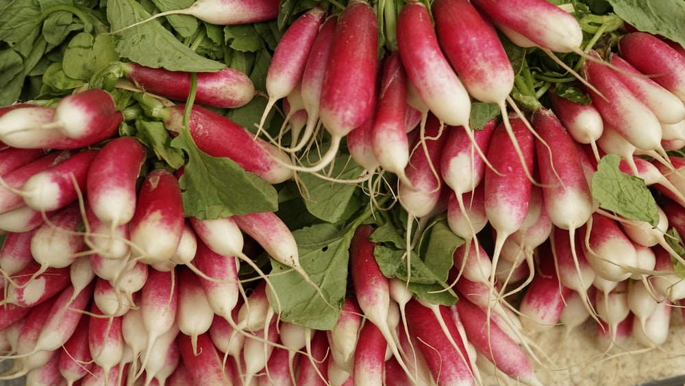 pink and green chili peppers
