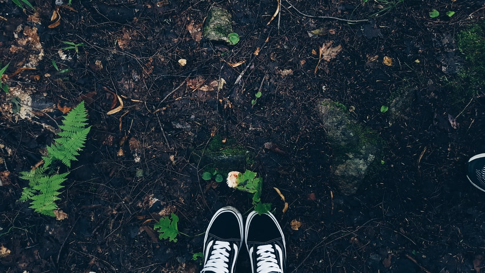 person wearing black and white sneakers standing on brown leaves