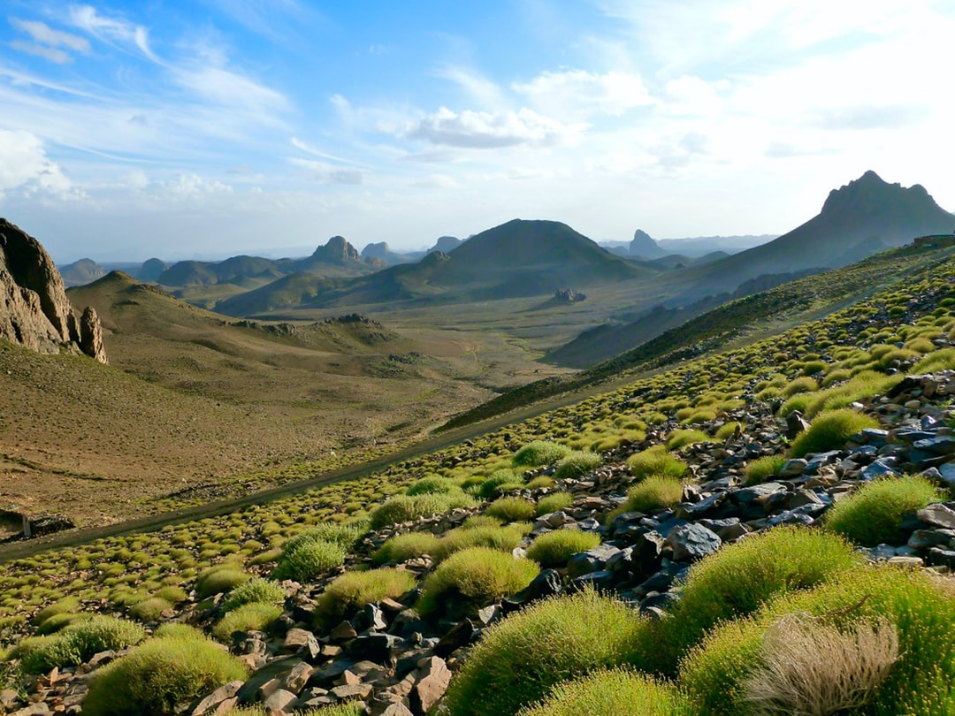 After a rainy day in the Sahara - Parc National Ahaggar - Assekrem 2600m (Algeria)  made by rouichi / switzerland