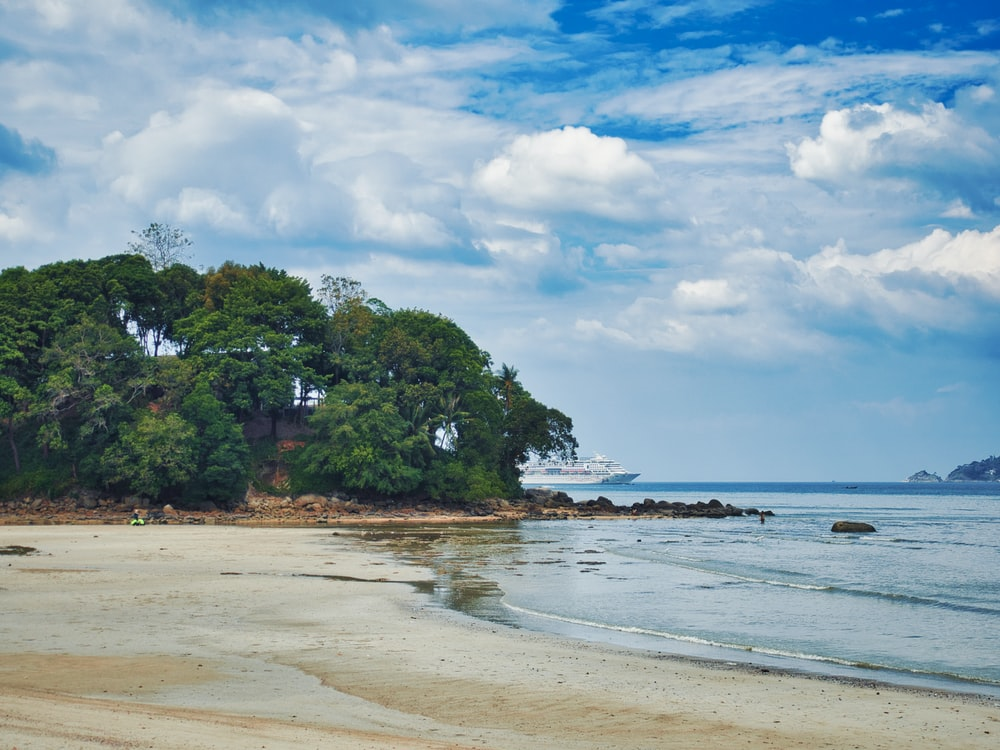 green trees on beach shore under white clouds and blue sky during daytime