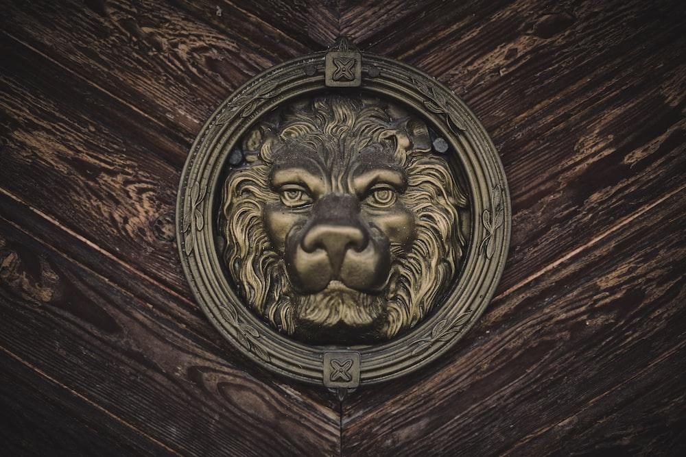 gold lion head door knob