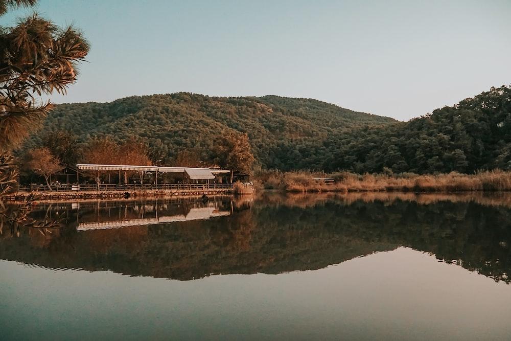 brown wooden bridge over river during daytime