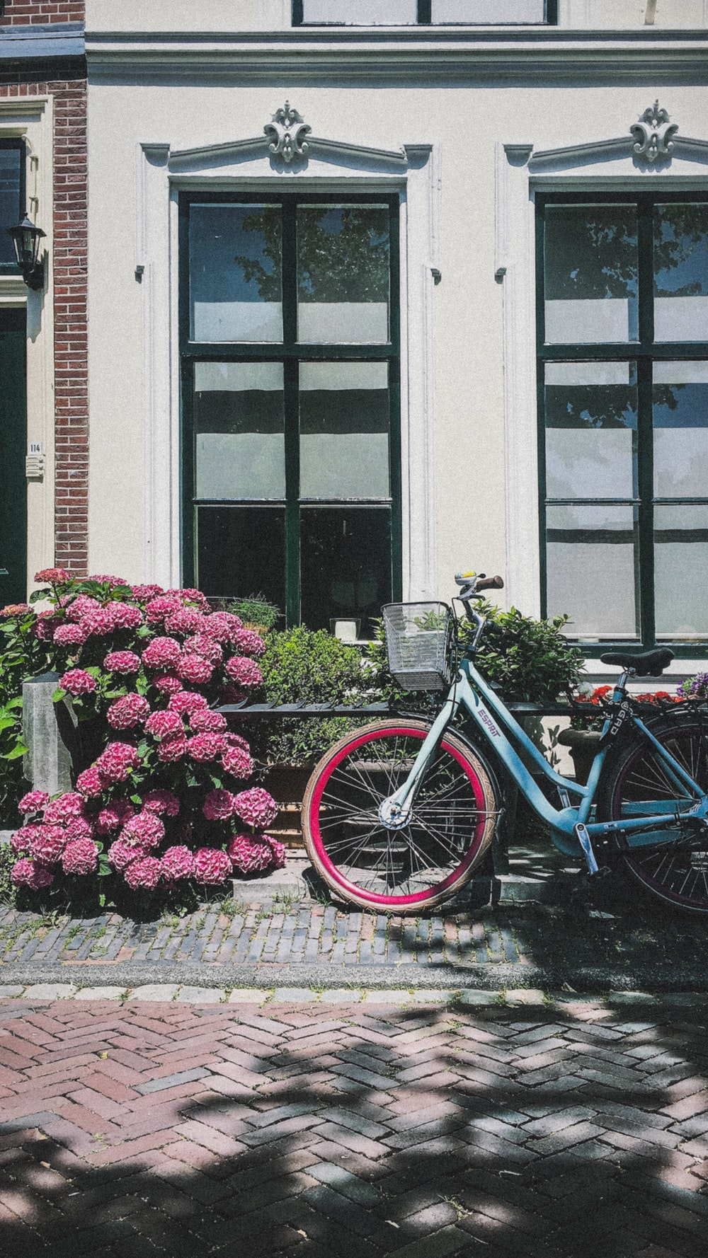 blue city bike parked beside pink flowers