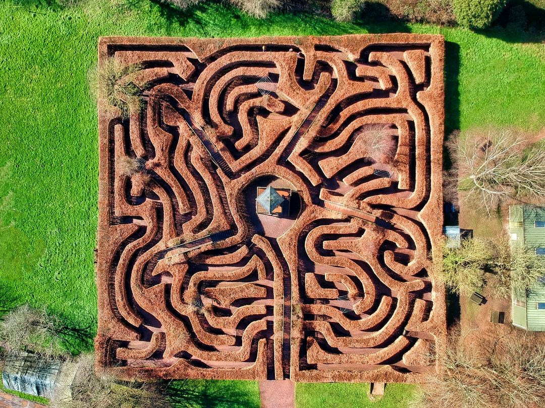 Top down drone shot of the maze at Wildwood Escot, Devon, UK