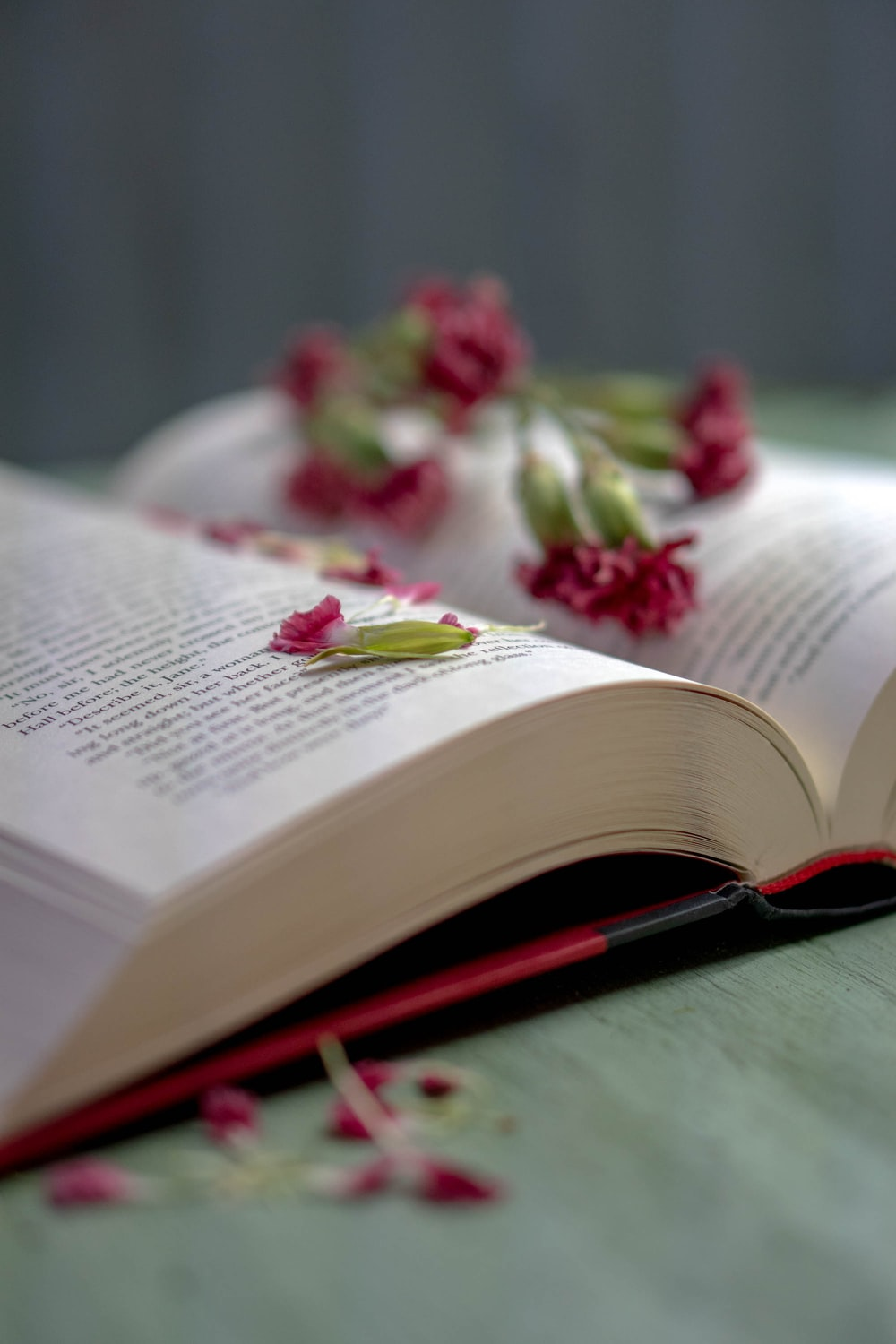 red and white flowers on book page