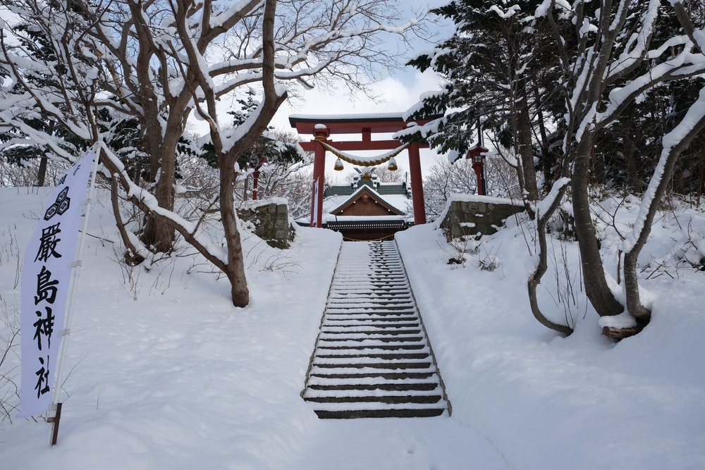 brown wooden bridge covered with snow