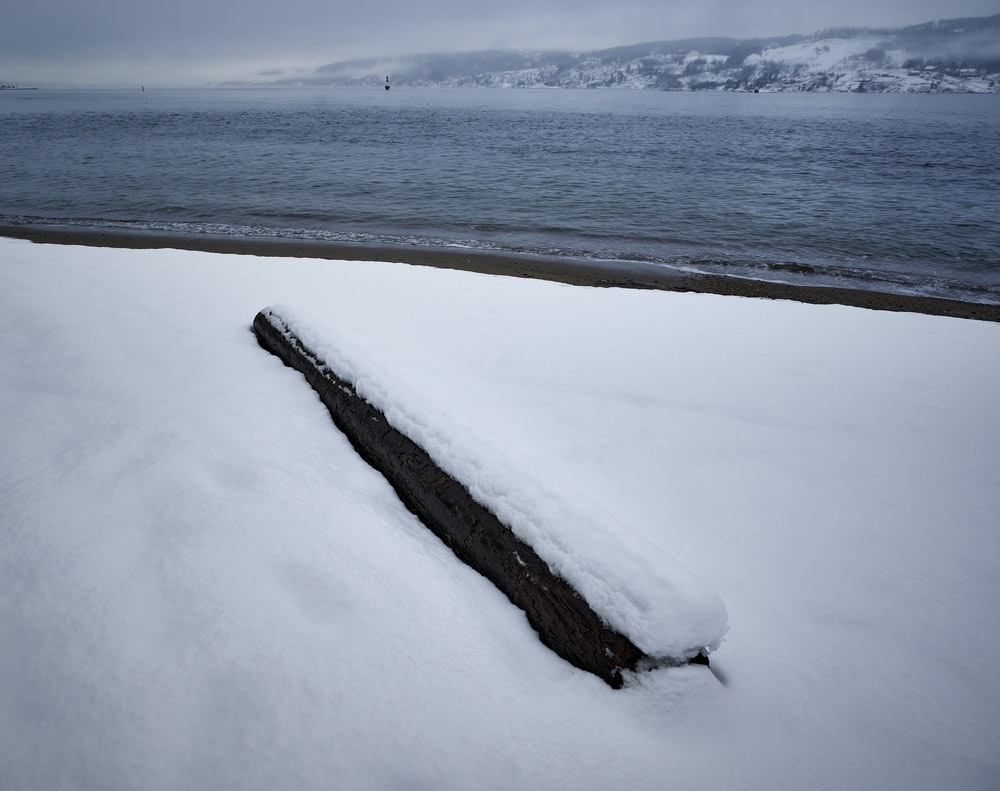 brown wooden log on white snow covered ground