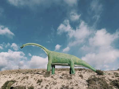 green dinosaur on brown sand during daytime dinosaur zoom background