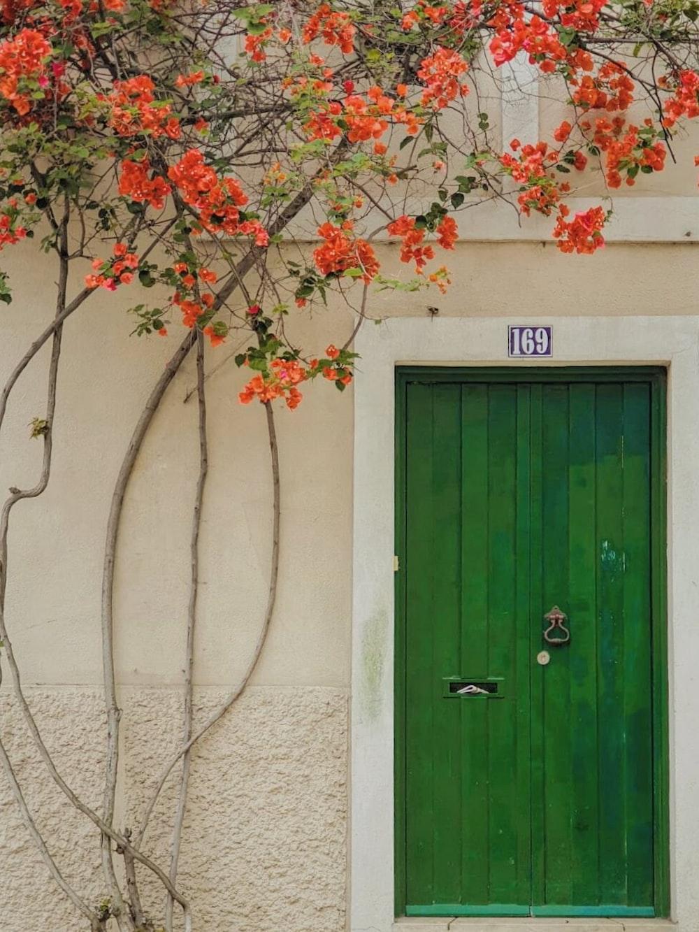 green wooden door with pink flowers on top