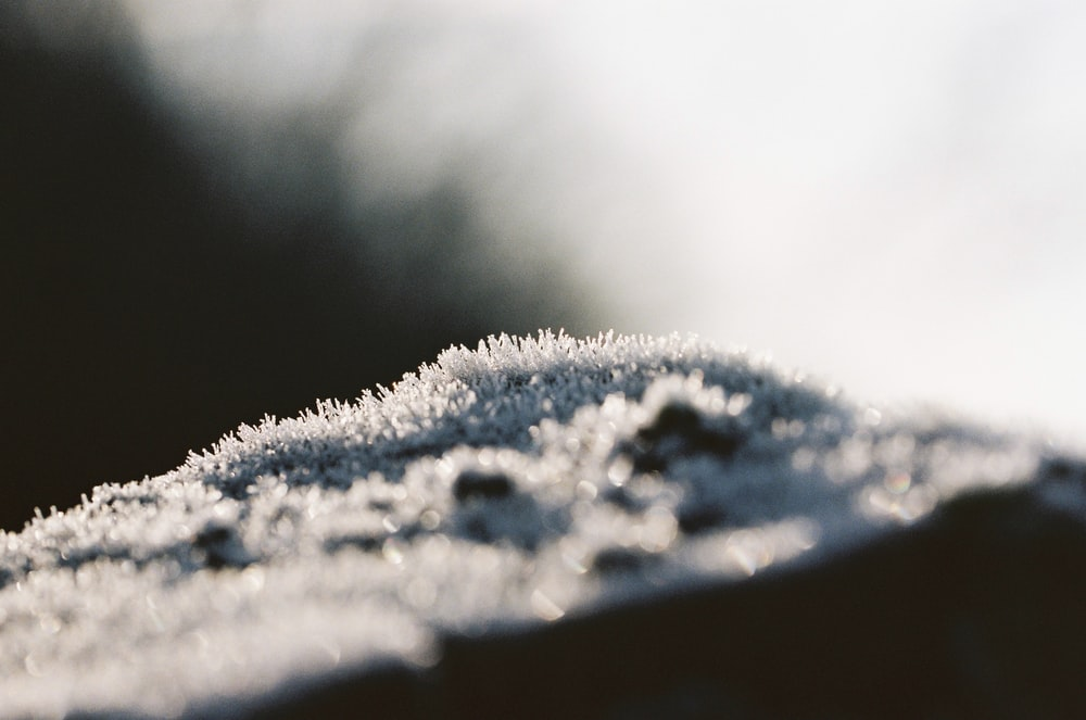 white snow on brown wooden table