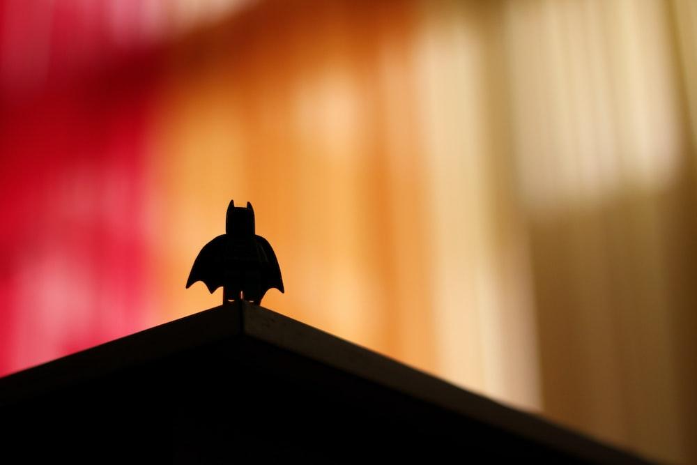 silhouette of bird on top of brown wooden shelf