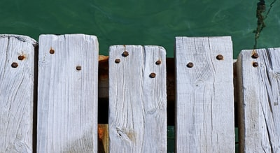 white wooden fence on green water