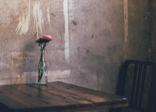 red rose in clear glass vase on brown wooden table