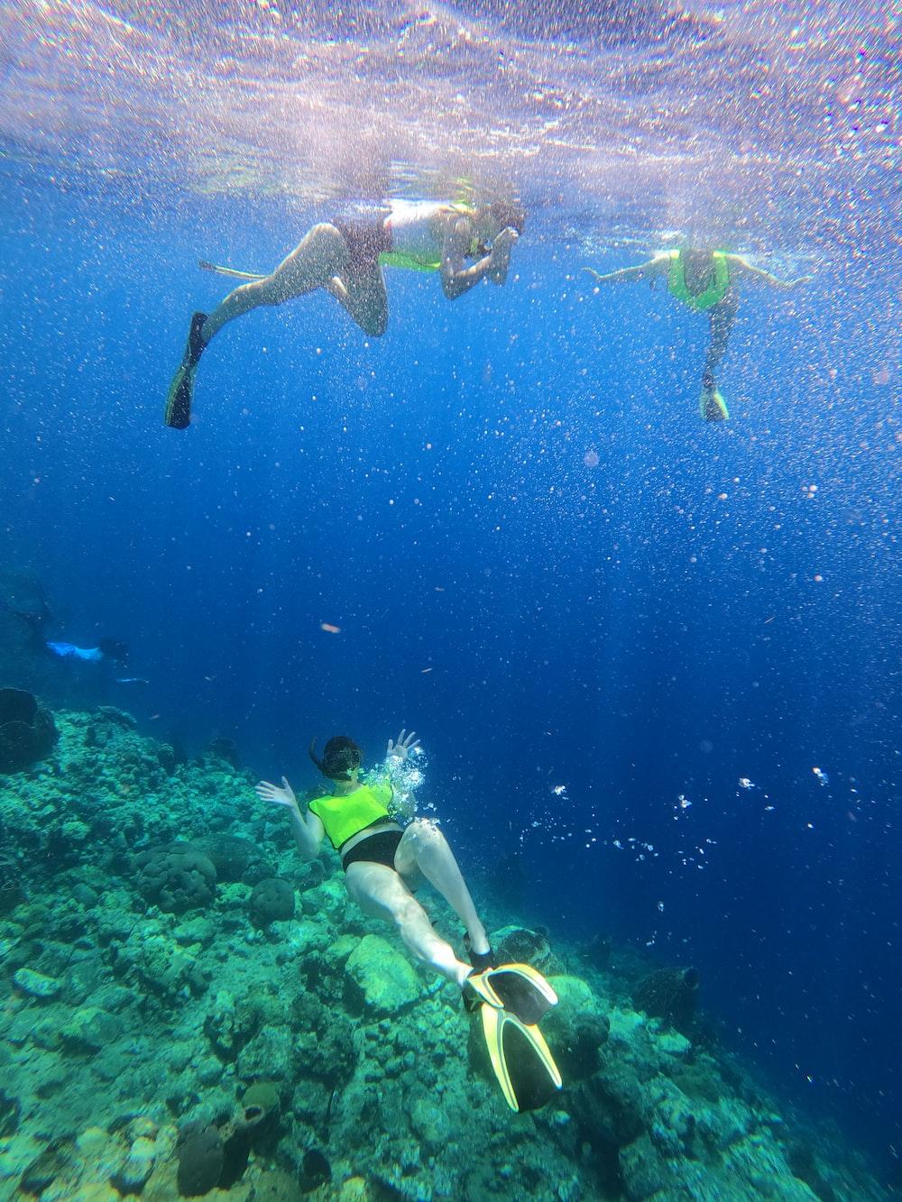 woman in blue and white bikini swimming in the water