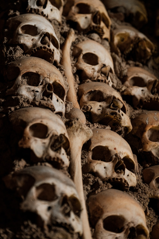 brown wooden human skull decor