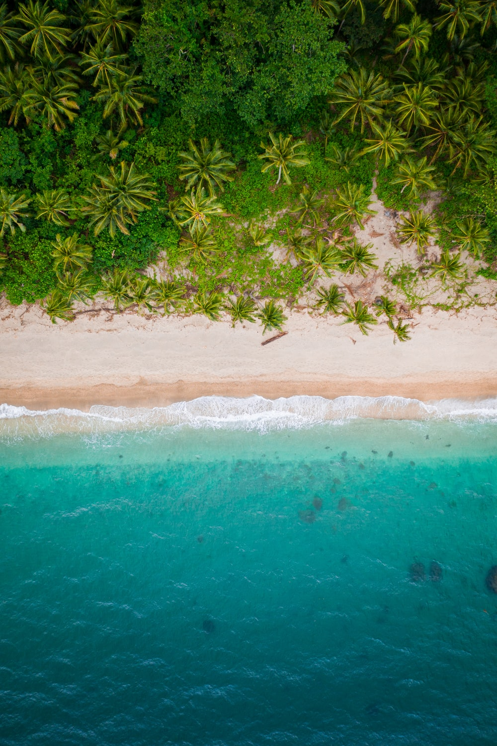 aerial view of beach during daytime