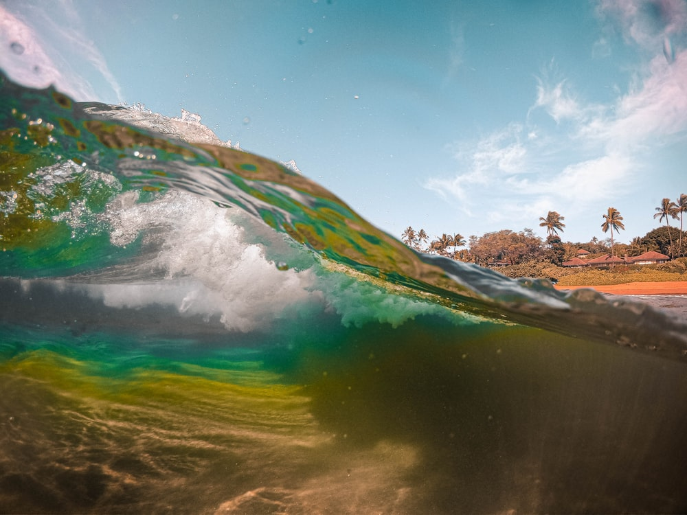 green and brown water wave