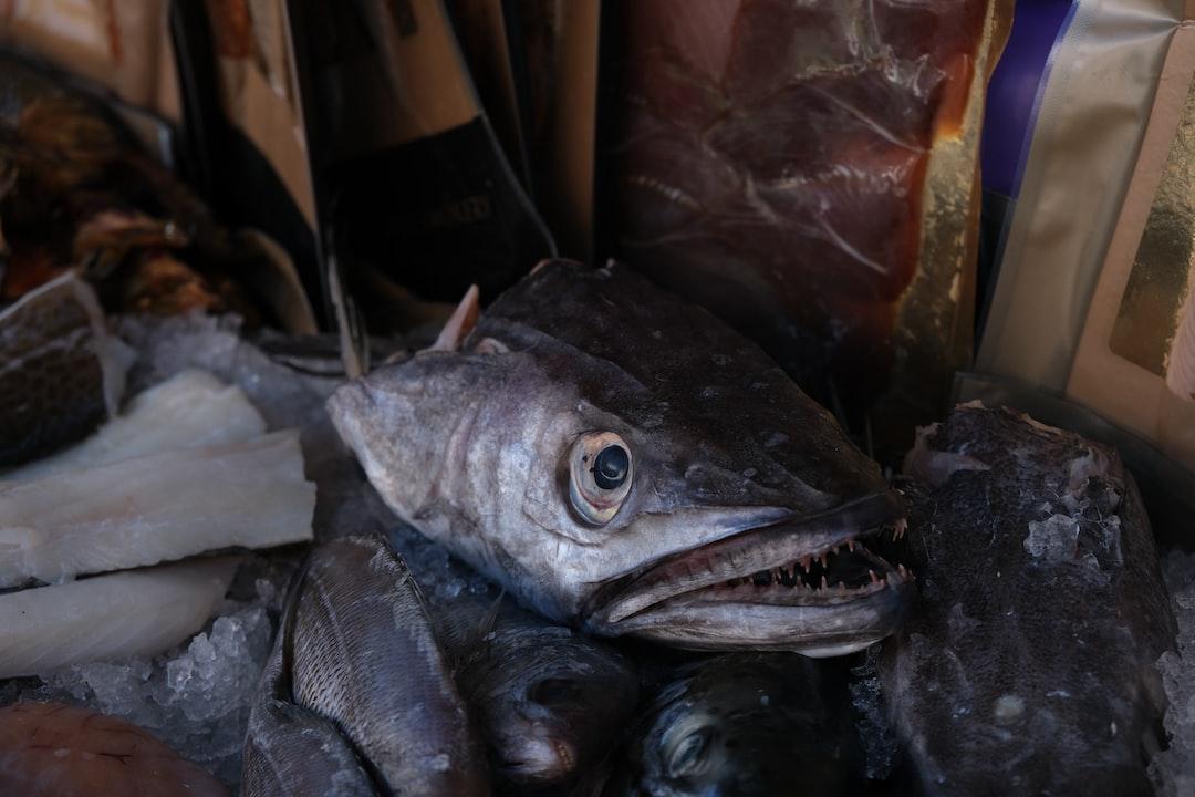 Fish head on a market stall