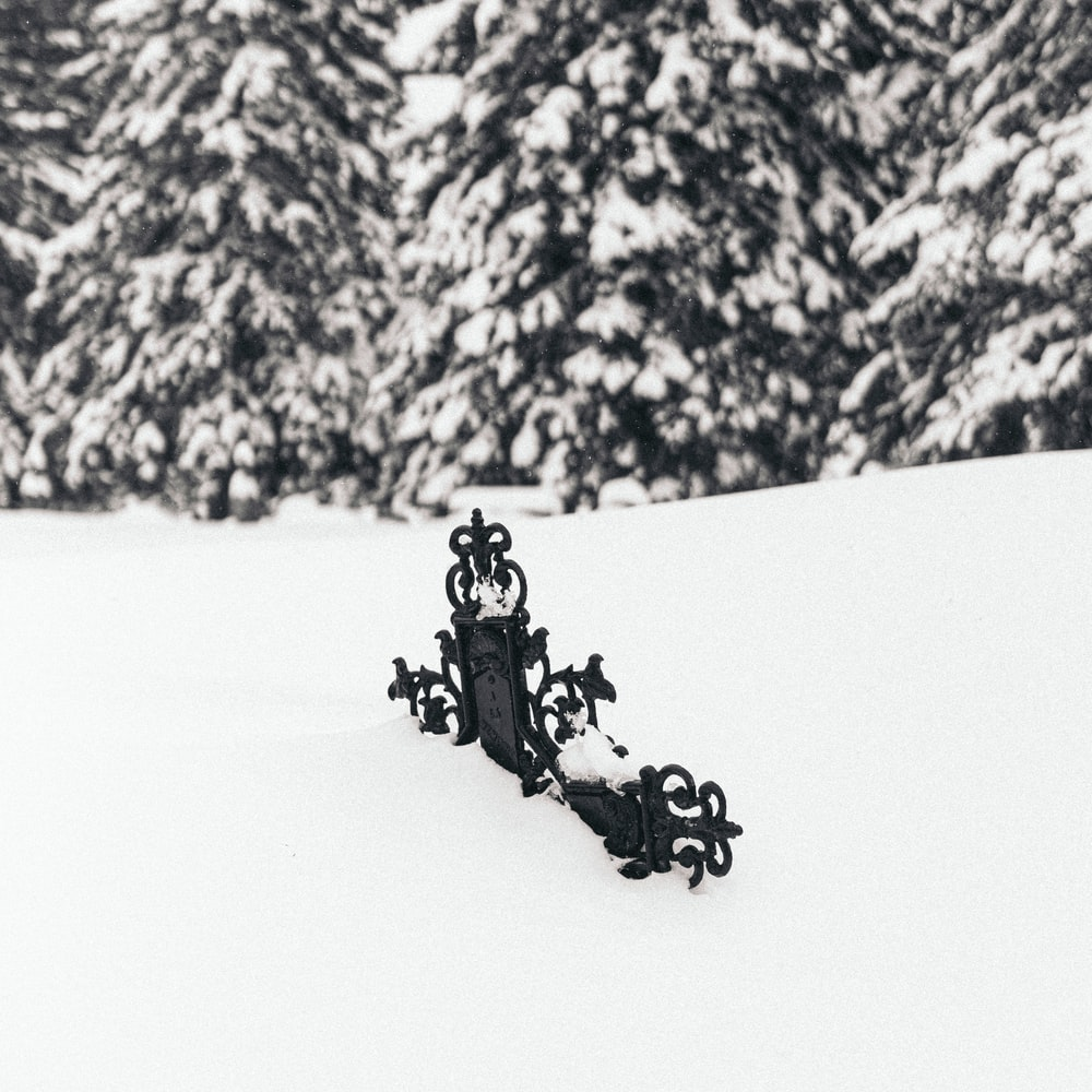 2 people riding on black horse on snow covered ground during daytime