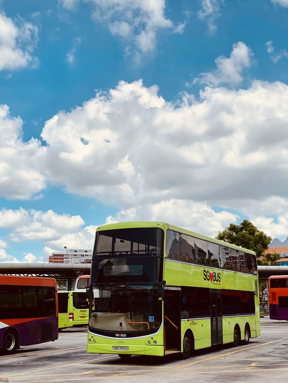 red and white bus under blue sky during daytime