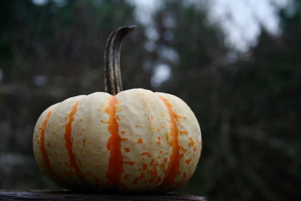 orange pumpkin on brown wooden table