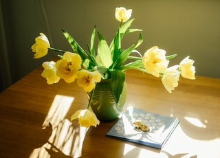 yellow tulips in green ceramic vase