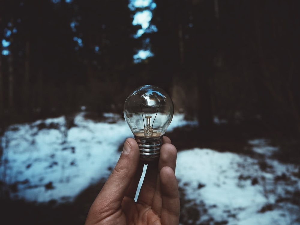 person holding light bulb during winter