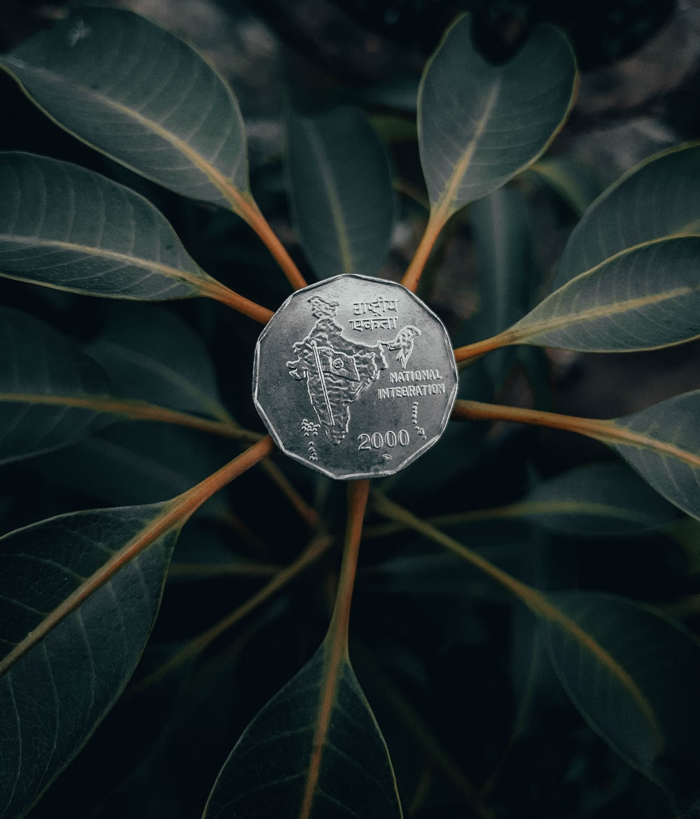 silver round coin on green plant