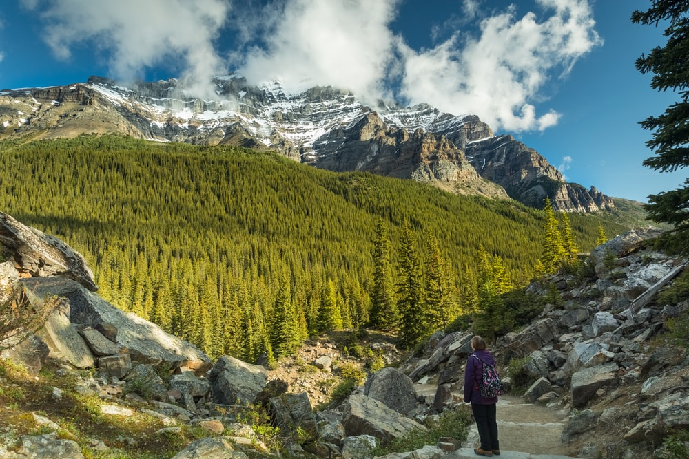 person in black jacket standing on gray rock near green trees and mountain under white clouds