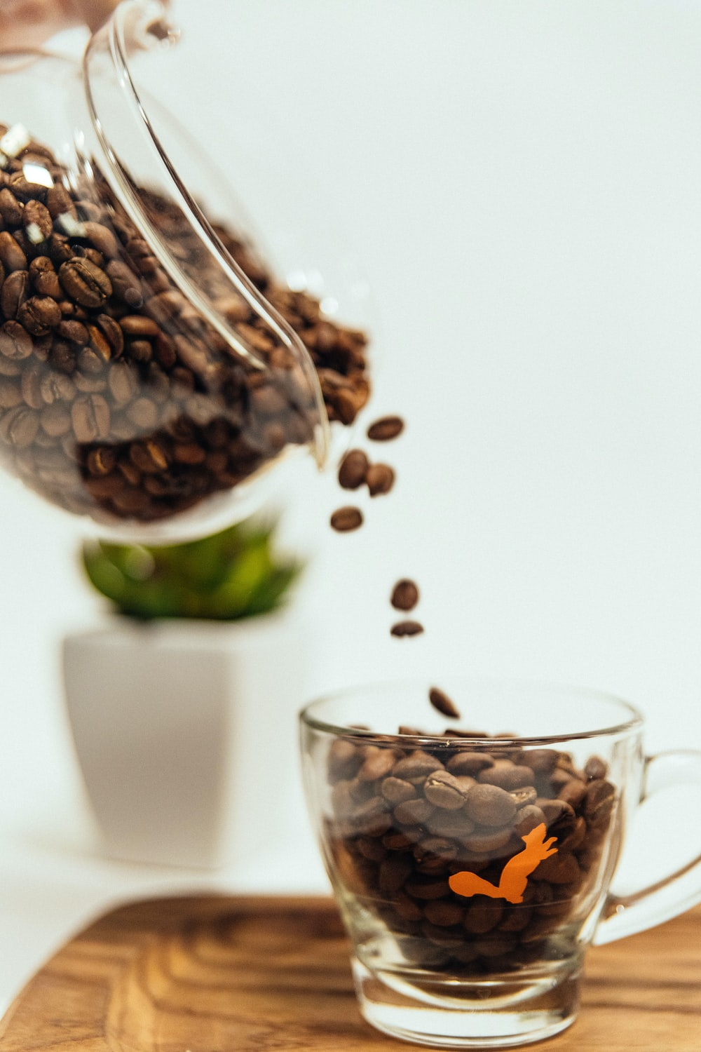 brown coffee beans in clear glass cup