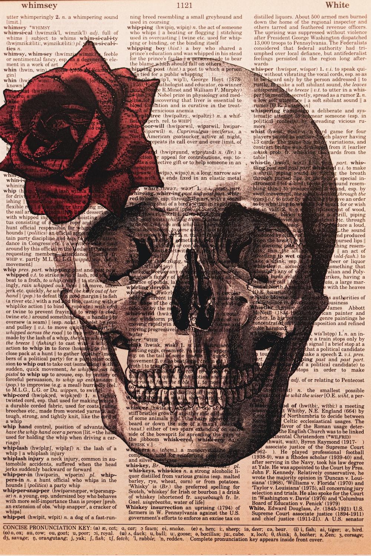 red rose on white printer paper