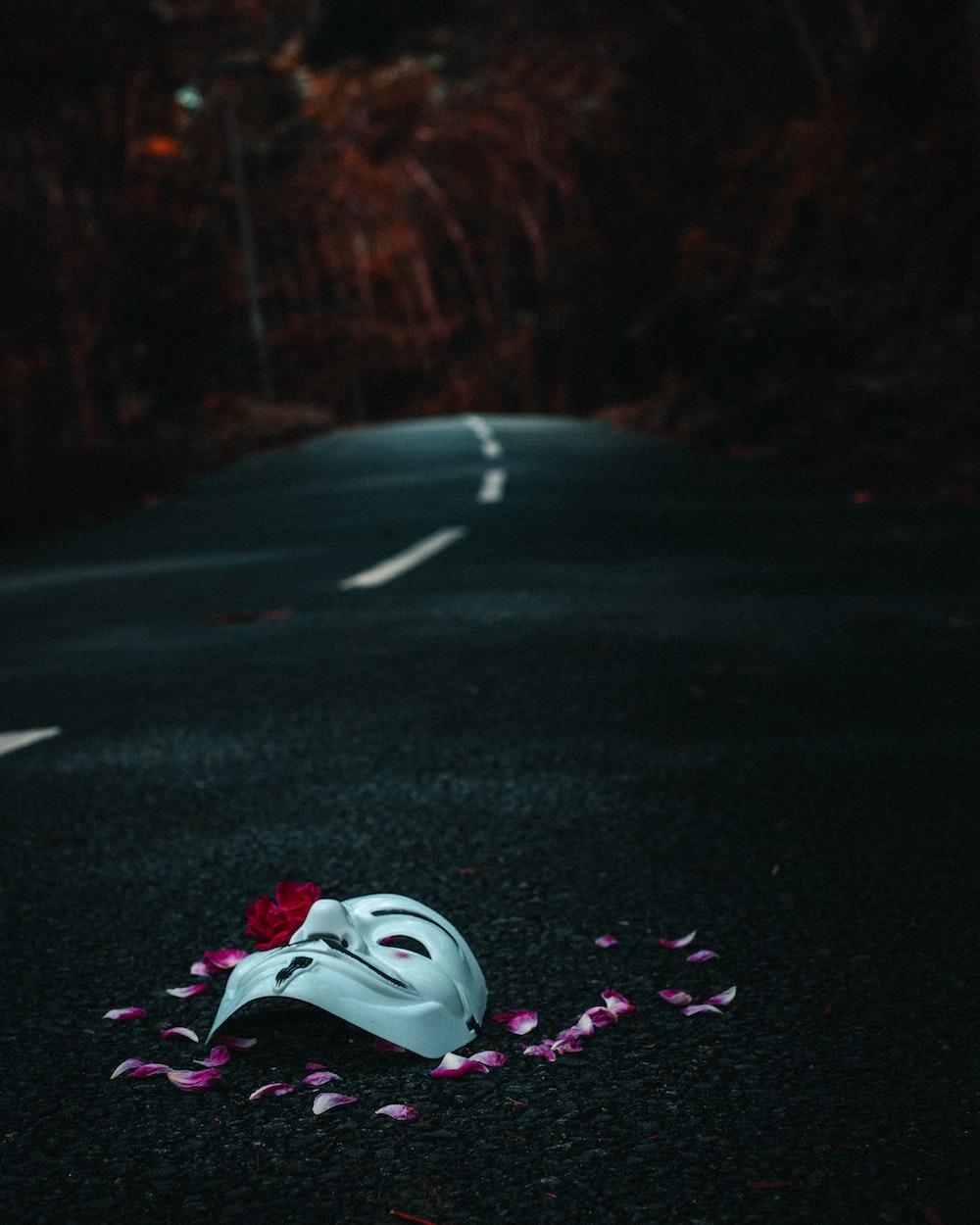 white and pink air jordan shoes on black asphalt road